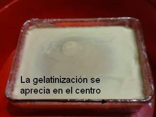 Gelatinizacion del jabon